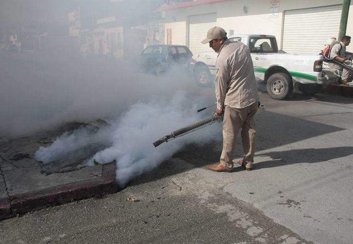 Continúa el programa de fumigación para evitar más contagios. (Julián Miranda/SIPSE)