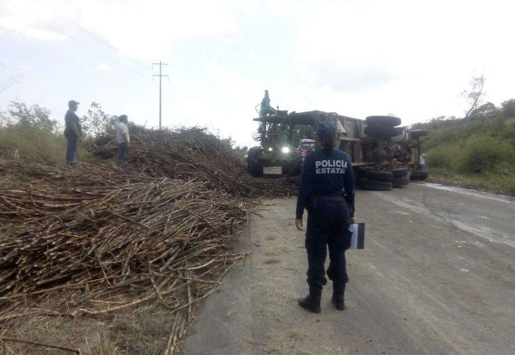 Las cañas que transportaba la pesada unidad, quedaron regadas en la carretera. Foto: Redacción/SIPSE