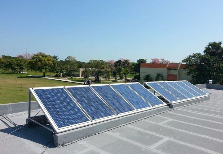 Paneles que toman la energía del Sol para reutilizarla de otras maneras. (Notimex/Foto de contexto)