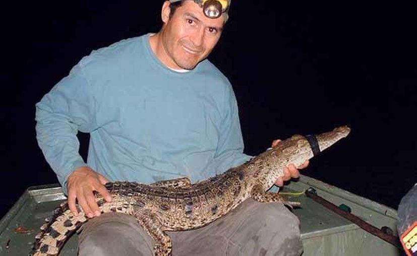 José Rogelio Cedeño Vázquez, especialista en Sistemática y Ecología Acuática, advierte que la mayoría de los anfibios y reptiles están amenazados. (Harold Alcocer/SIPSE)