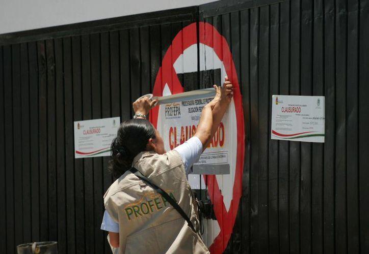 El pasado martes, la Profepa realizó la clausura temporal total de la gasolinera Servimar. (Harold Alcocer/SIPSE)