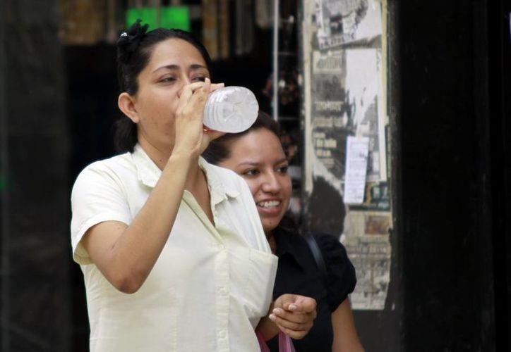 Hidratarse bien ayuda a no sufrir consecuencias a causa del calor extremo. (SIPSE/Archivo)