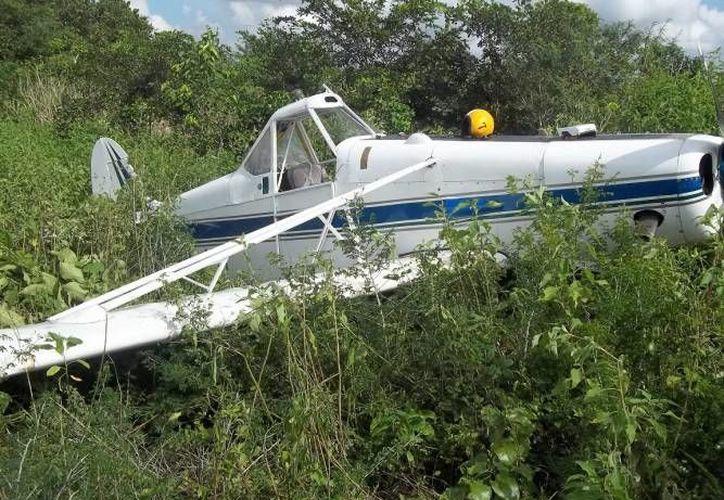 Este día se reportó la caída de una avioneta en Nuevo León, el piloto y su alumno resultaron ilesos. Imagen de contexto de una avioneta entre matorrales, luego de un accidente aéreo.  (Archivo/SIPSE)