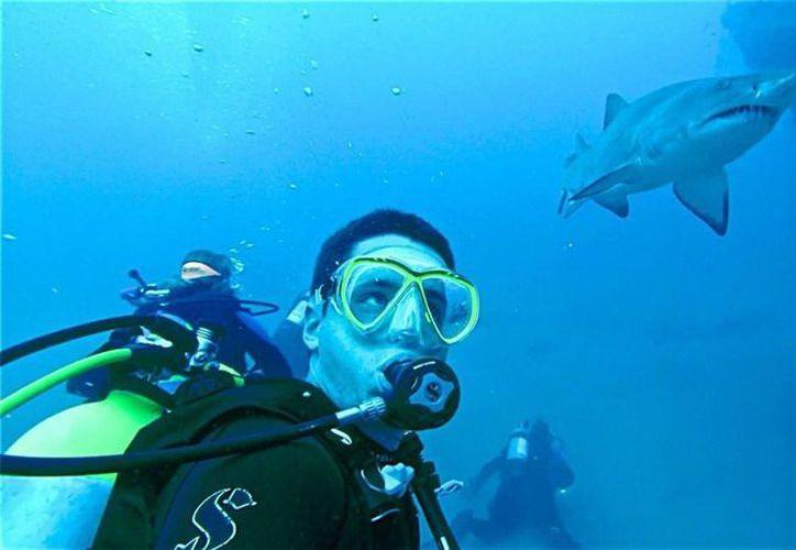 Según registros, al año ocurren sólo 5 muertes por ataque de tiburón. (Foto: Reddit)