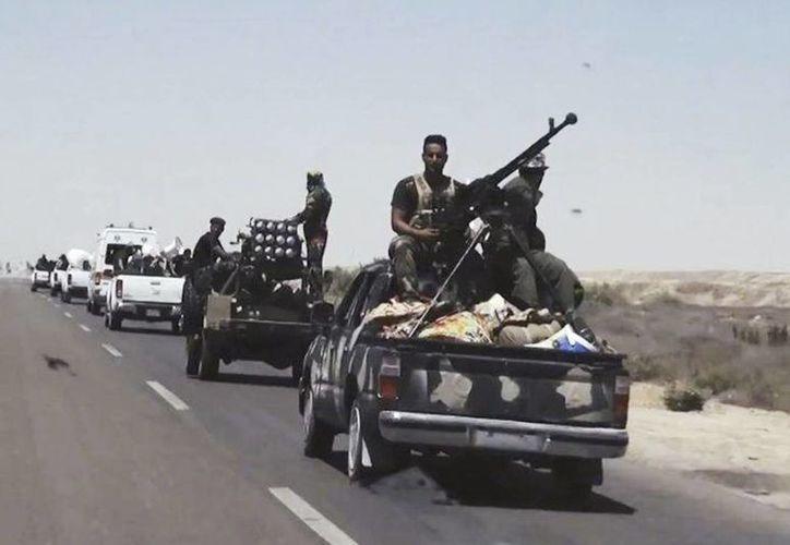 Fuerzas de seguridad iraquíes, respaldadas por unidades sunís y chiís progobierno, preparándose para atacar posiciones del grupo que se hace llamar Estado Islámico en Faluya, en Irak. (Agencias)