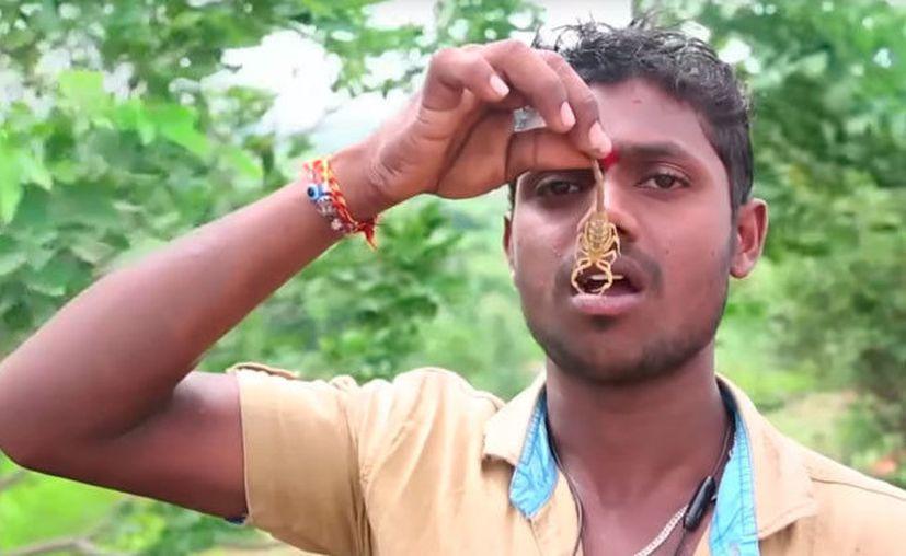 Además de venerar alacranes, también rinden tributo a las serpientes. (Foto: Captura del video)