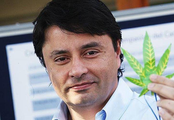 El alcalde chileno derechista Rodolfo Cartes afirma que 'la cannabis no cura el cáncer pero alivia el dolor y va a entregar una alternativa más barata'. (ansalatina.com)