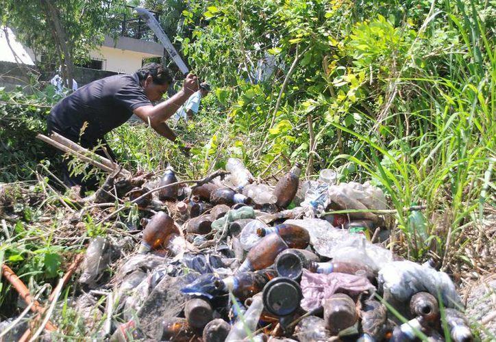 Limpieza de lotes baldíos, una de las principales demandas de la ciudadanía. (Cortesía/SIPSE)