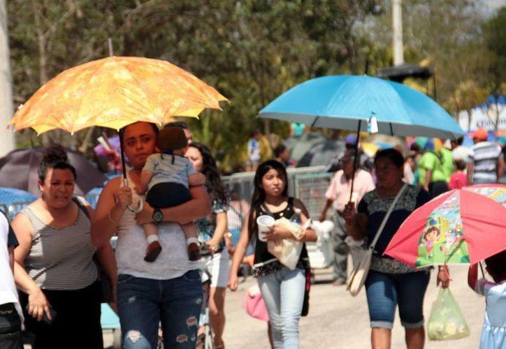 El domingo se registró una temperatura máxima de 36.3 grados en Mérida. (Milenio Novedades)