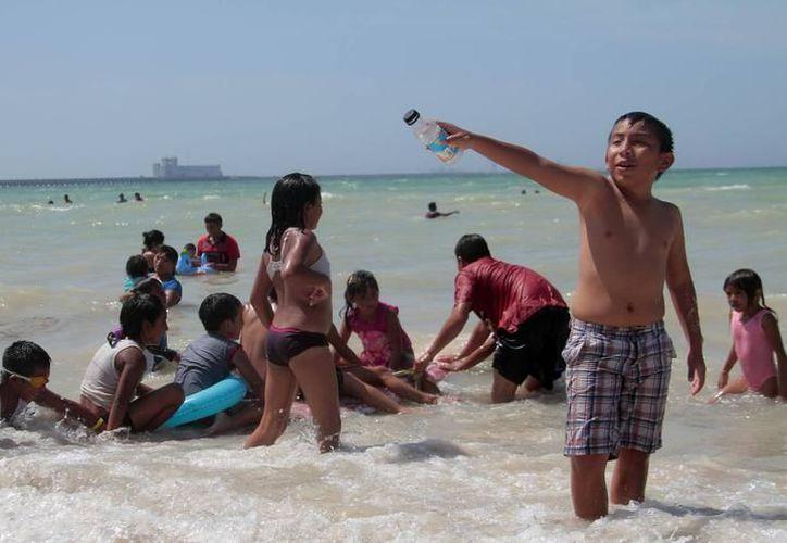 Se han encontrado en playas: plásticos, materia fecal, metales pesados y plaguicidas, que indican que el ambiente no está del todo sano. (SIPSE)