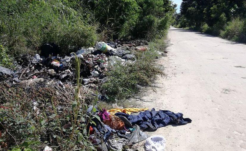 EL cuidador de un rancho en la cercanía, señaló que constantemente quema la basura que se acumula en el lugar. (Javier Ortiz/SIPSE)