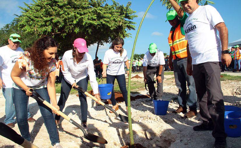 Unas 700 personas participaron ayer en la siembra de mil plantas en el Parque de Deportes Extremos. (Novedades Yucatán)