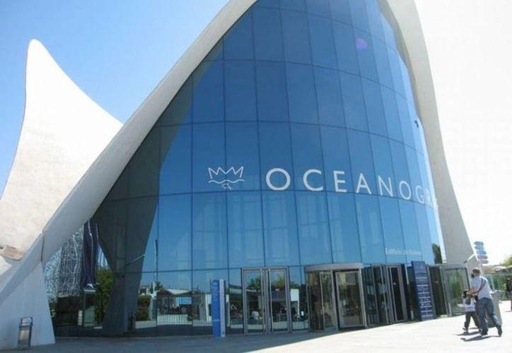 Oceanografía tiene más de 40 contratos por servicios de ingeniería marina con Pemex. (diariocambio.com.mx)