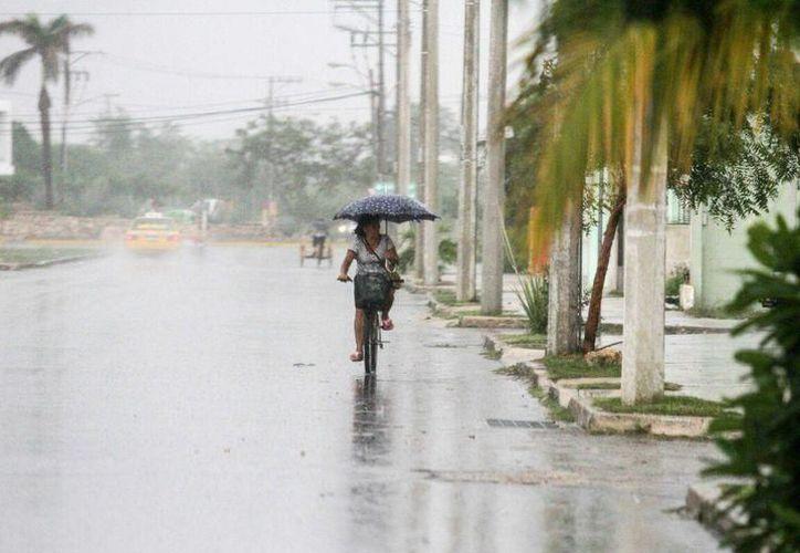 A pesar de la lluvia, se pronostican temperaturas máximas de 33.0 a 37.0 grados Celsius en Yucatán. (Milenio Novedades)