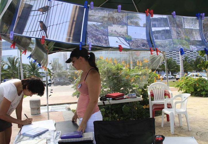 Realizan exposición fotográfica para concientizar sobre el cuidado del manglar. (Tomás Álvarez/SIPSE)