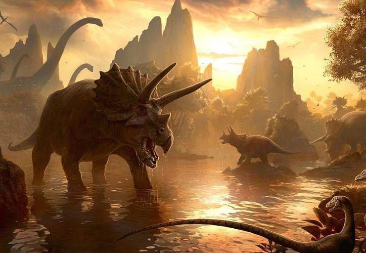 """El domingo 2 marzo la conferencia será de  """"Dinosaurios, meteoritos, cuevas y corales"""". (Contexto/Internet)"""