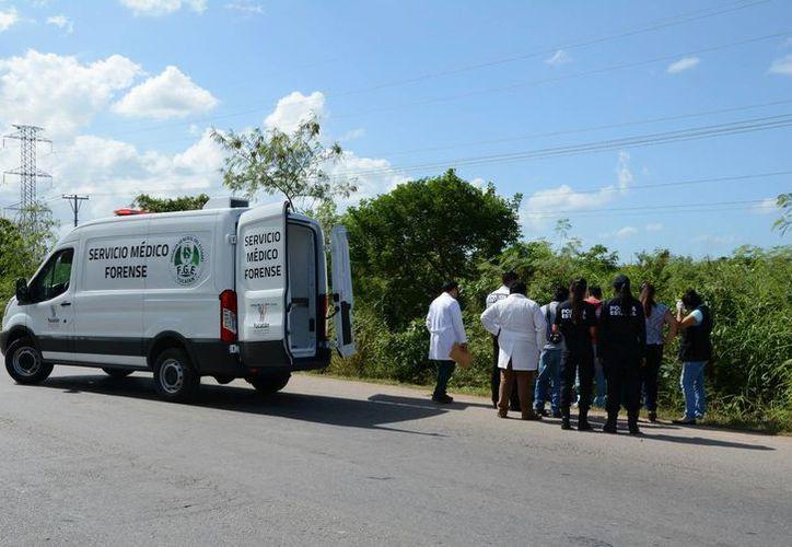 Un hombre fue hallado sin vida en el Periférico, cerca del libramiento a Campeche. Aparentemente fue atropellado. (SIPSE)