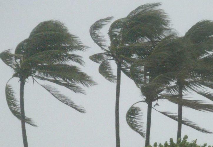 Una depresión tropical se transforma en tormenta cuando sus vientos máximos sostenidos alcanzan los 63 kilómetros por hora. (Archivo/EFE)