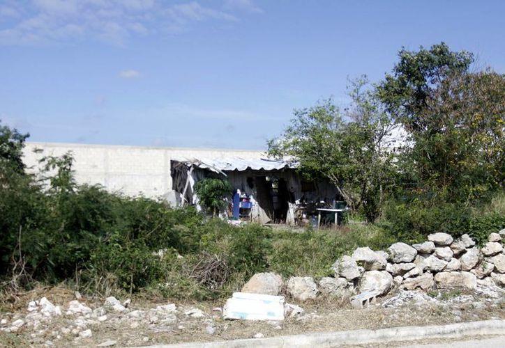 El Ayuntamiento meridano se prepara para multar a los propietarios de terrenos con maleza o basura. (Christian Ayala/SIPSE)
