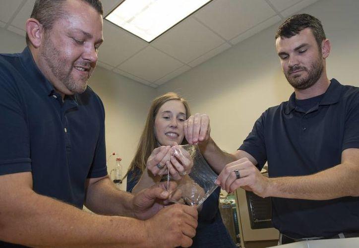Científicos e ingenieros del NSWC demuestran la elesticidad del limo del llamado 'pez bruja del Pacífico'. (U.S. Navy photo by Ron) Newsome