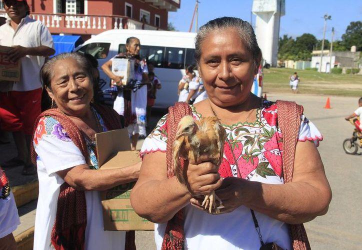 El gobierno del estado de Yucatán, por medio de la Secretaría de Desarrollo Rural entregó este miércoles más de diez mil aves de traspatio a habitantes de Calotmul.- (Foto oficial cortesía del Gobierno de Yucatán)