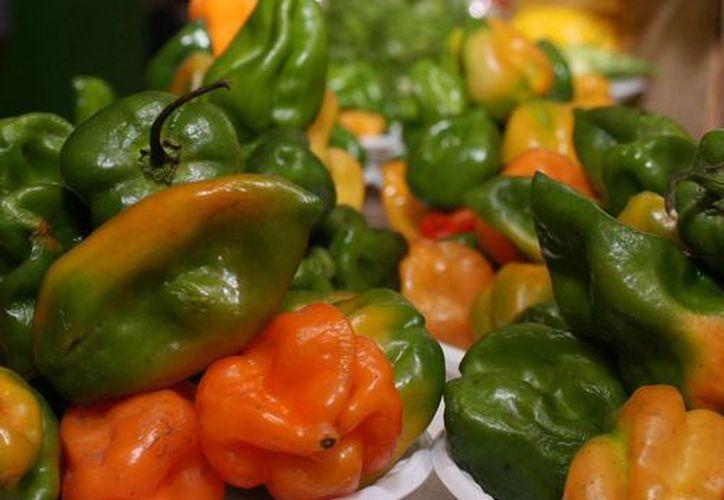 El chile habanero yucateco sólo se puede vender en el Estado y a nivel nacional. (Milenio Novedades)