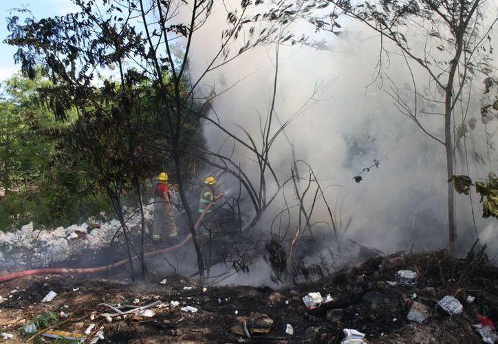 El año pasado fue aprobada la Ley de Quemas y Prevención de Incendios Forestales, que regula el uso del fuego en la demarcación. (Harold Alcocer/SIPSE)