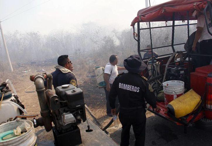El 99 por ciento de los incendios combatidos tuvieron su origen en actividades humanas. (Juan Albornoz/SIPSE)