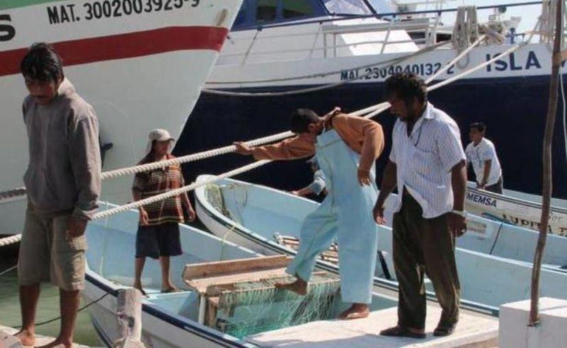 Unos 13 mil pescadores están inmersos en la actividad. (Novedades Yucatán)