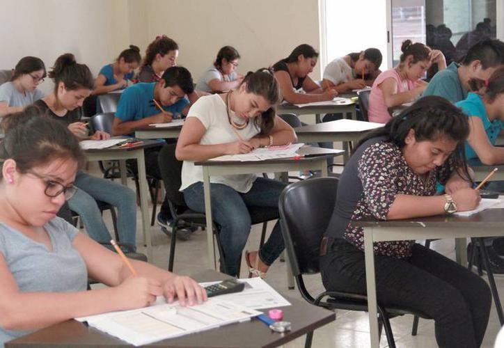 Es la séptima ocasión que ofrecen estos cursos gratuitos. (SIPSE)