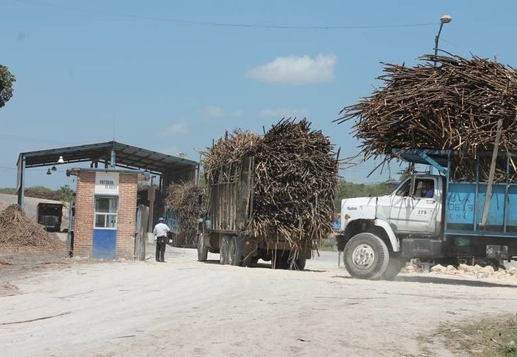 Un par de góndolas, que se encontraban retenidas en el interior del ngenio desde hace varios días, puedan abandonar las instalaciones del complejo azucarero. (Edgardo Rodríguez/SIPSE)