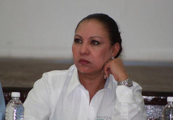 Ludivina Menchaca Castellanos dijo que revisarán a quienes exhiben animales. (Adrián Barreto/SIPSE)
