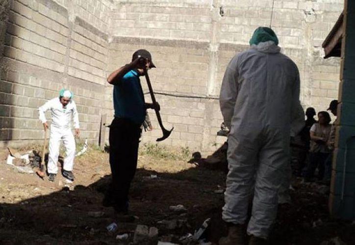 Los restos humanos desenterrados son sometidos a un proceso de dactiloscopia, odontología forense y pruebas de ADN. (twitter/@PersonalEscrito)