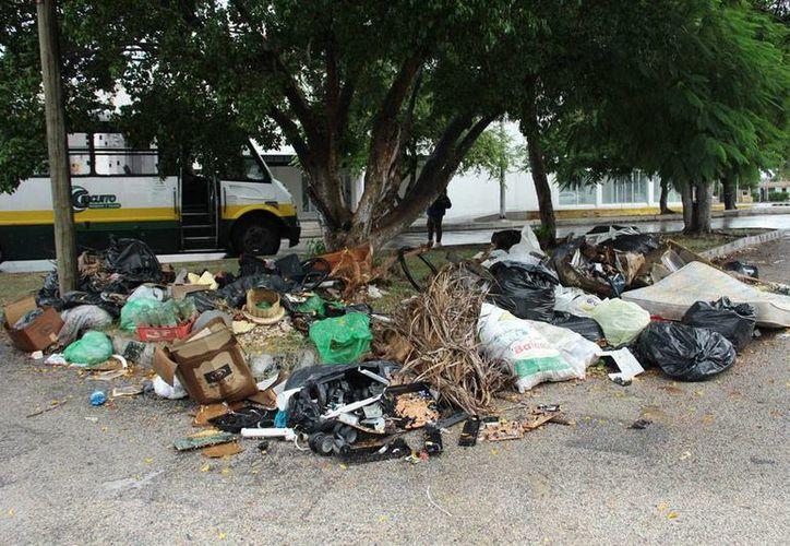 Las empresas Pamplona que abandonó la recolección de basura en 29 mil predios causó que los desechos se acumularan principalmente en camellones y areas 'comunes' de los fraccionamientos. La imagen es únicamente ilustrativa (Milenio Novedades)