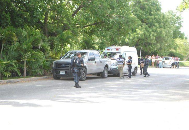 La joven fue asesinada en el camellón central de la avenida Chac Mool. (Eric Galindo/SIPSE)
