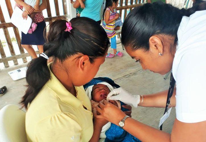 Atienden a niños menores de cinco años con la prueba Evaluación del Desarrollo Infantil que realiza el Centro Regional de Desarrollo Infantil y de Estimulación Temprana. (Joel Zamora/SIPSE)