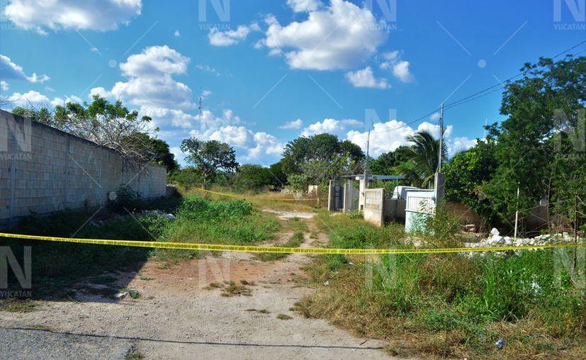 El cuerpo de la mujer fue abandonado en una brecha durante la madrugada del domingo 8 de diciembre. (Novedades Yucatán)