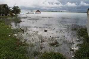 Incrementa el nivel del agua en la laguna de Bacalar