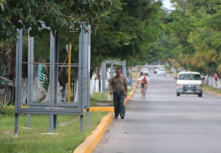 Este mes serán retirados los 50 parabuses clausurados en la ciudad. (Gustavo Villegas/SIPSE)