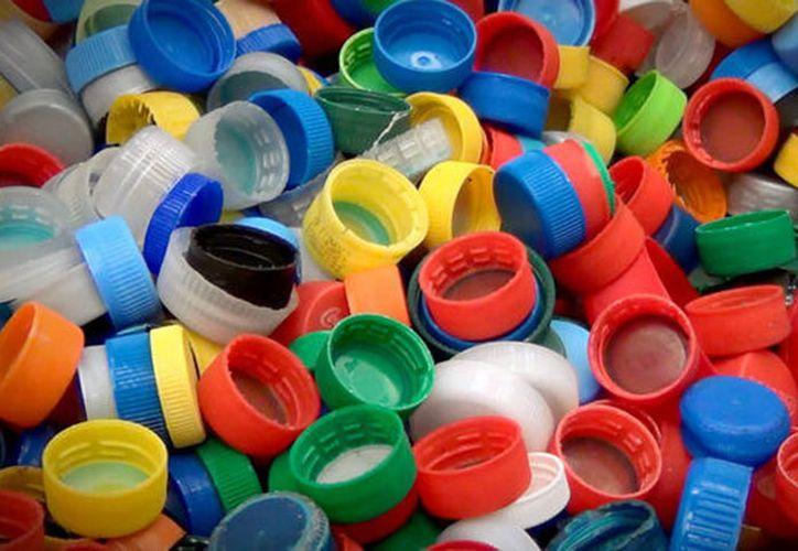 Ante ese panorama, la asociación civil exhorta a las recicladoras de Chetumal y Playa del Carmen a sumarse. (Archivo/ SIPSE)