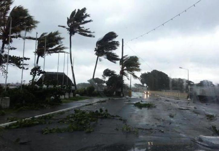 El ciclón Evan destruyó casas y cultivos, y derribó árboles y líneas eléctricas. (www.wordpress.com)