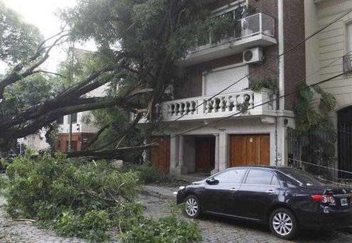Los fuertes vientos que azotaron la Ciudad de México alcanzaron rachas de 60 kilómetros por hora. (twitter.com/PcSegob)