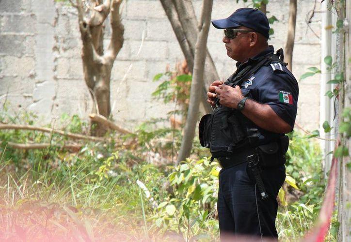 Doscientos quince policías de Cozumel serán evaluados este año. (Gustavo Villegas/SIPSE)