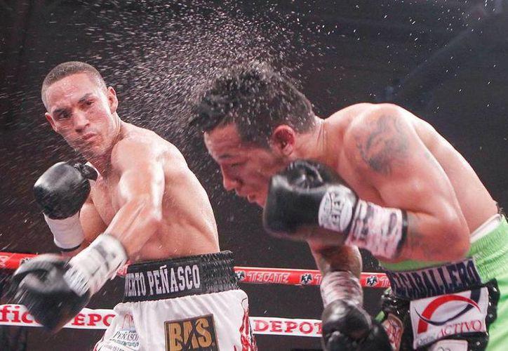 Juan Francisco Estrada, ex campeón del mundo mejoró su récord en 34-2, 24 KO, luego de obtener la victoria ante el púgil filipino.En la foto, Estrada conecta un gancho a la cara de su rival.(Foto tomada de Zanfer)