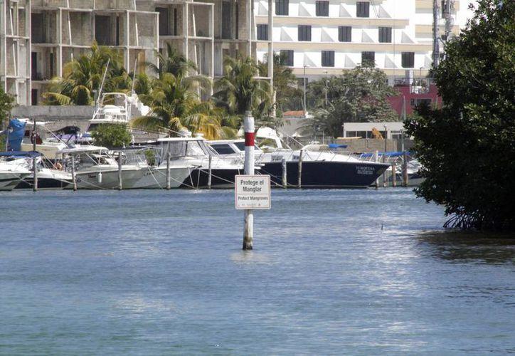 Las embarcaciones se dejan atracadas en el muelle del kilómetro 2.5. (Tomás Álvarez/SIPSE)