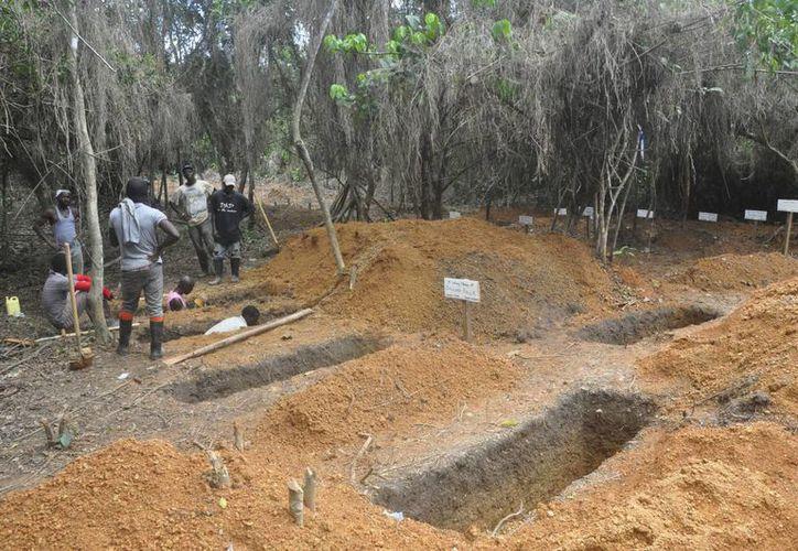 Cavadores de tumbas excavadas fosas para enterrar a las víctimas de ébola en el condado de Bong afueras de Monrovia, Liberia; el virus ha matado en total a cuatro mil 877 personas. (Agencias)