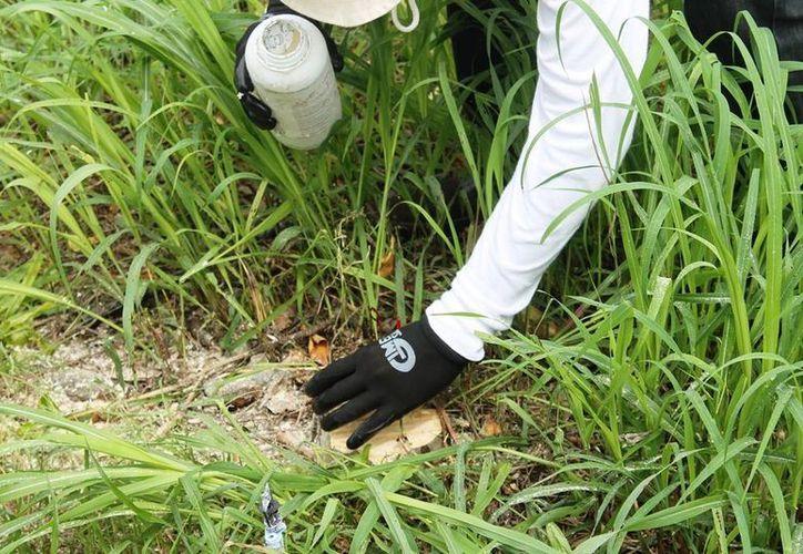 Autoridades federales entregaron fertilizantes caducos por negligencia de la empresa proveedora. (Edgardo Rodríguez/SIPSE)