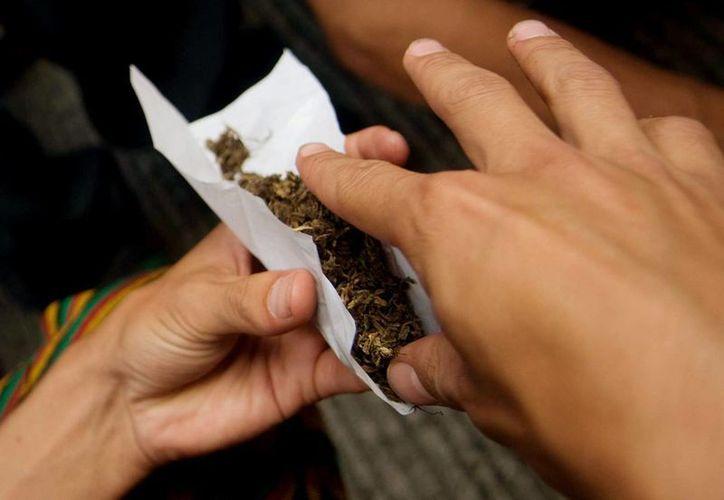 Existen aplicaciones móviles que permite a consumidores de marihuana realizar un pedido en segudos y recibirlo en 15 minutos. (EFE)
