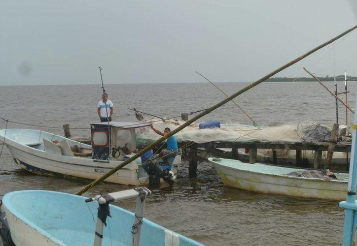Reportan que las lanchas provienen del puerto Chiquilá y Puerto Juárez. (Raúl Balam/SIPSE)