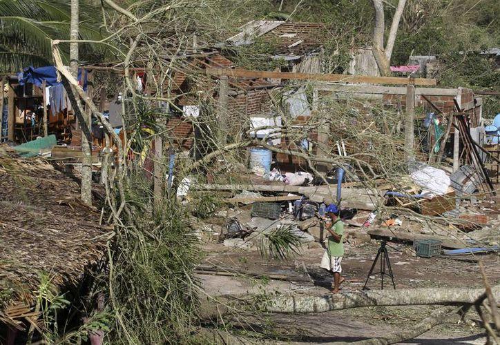 Casas dañadas, árboles y postes caídos se observaron, en el municipio de Francisco Villa, en el estado mexicano de Jalisco, tras el paso del huracán Patricia que se degradó luego de ser de categoría 5 en la escala Saffir-Simpson a depresión tropical. (EFE)